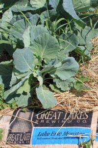 Great Lakes Brewing Co. Pint Size Farm at Hale Farm and Village