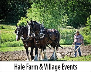 HFV Events