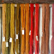 Hale Farm & Village Natural Dye Day Adult Workshop