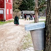 Maple Sugar Festival & Pancake Breakfast Signature Event
