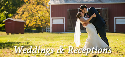 Weddings & Receptions